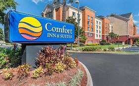 Comfort Inn And Suites Orlando Fl