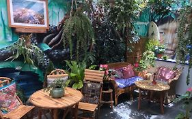 Froguesthouse Lima