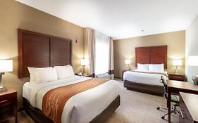 Comfort Inn Suites Dallas Tx