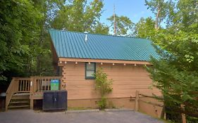 Foxy Lady #1531 By Aunt Bug'S Cabin Rentals