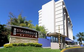 Staybridge Expo Guadalajara
