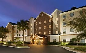 Staybridge Suites Brandon Fl