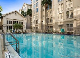 Homewood Suites By Hilton Orlando-Intl Drive/Convention Ctr photos Exterior