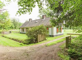 Cozy Holiday Home Near Forest In Baarn photos Exterior