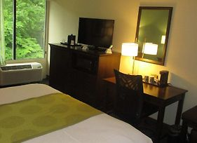 Best Western Williamsburg Historic District photos Room