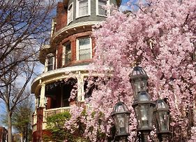 Wilson House Bed & Breakfast photos Exterior