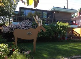 Anchorage Walkabout Town B&B photos Exterior