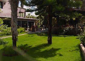 The Black Orchid Bed And Breakfast photos Exterior