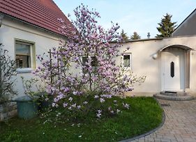 Cozy Apartment In Leubnitz-Neustra Near River photos Exterior