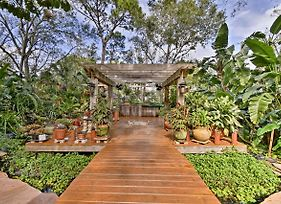 Sarasota Cottage W/Steam Room, Pergola&Water Falls photos Exterior