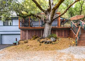 Placerville Cabin W/ Forest Views - Walk To River! photos Exterior