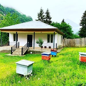 Friendly Beekeeper photos Exterior