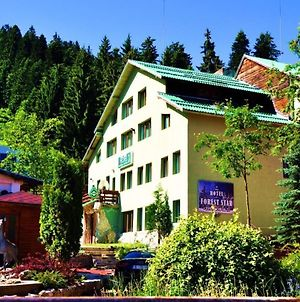 Forest Star Hotel photos Exterior