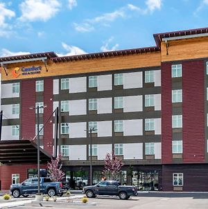 Comfort Inn & Suites Lakewood By Jblm photos Exterior