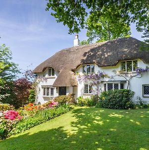Forest Drove Cottage - Idyllic New Forest 6 Bedroom Thatched Cottage photos Exterior