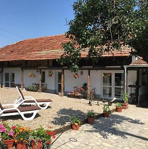 Sunflower Guest House Bulgaria photos Exterior