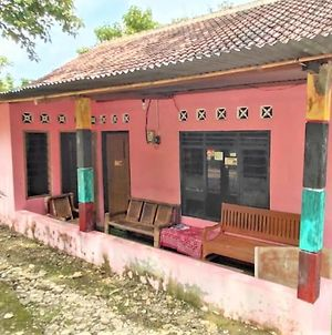 Homestay Lentera Putra photos Exterior