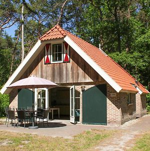 Amazing Home In Steenwijk - De Bult W/ Sauna, Wifi And 3 Bedrooms photos Exterior