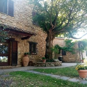 B&B All'Ombra Di San Damiano photos Exterior