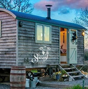 Bluebell Shepherds Hut, Menai photos Exterior