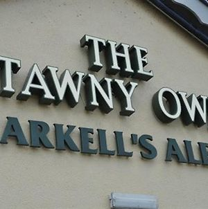 The Tawny Owl photos Exterior