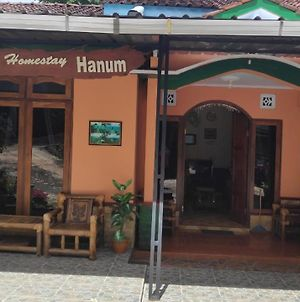 Homestay Hanum photos Exterior