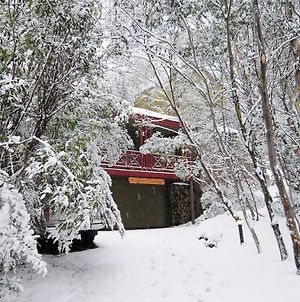 Thredbo 1380 photos Exterior