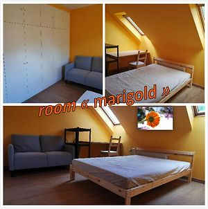 Homestay - Calm And Bright - Queen-Size Bed photos Exterior