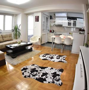 New, Modern & Cozy Apartment In The City photos Exterior