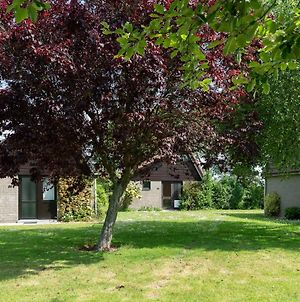Pleasant Home In A Small Holiday Park, 700 Metres From The Beach photos Room