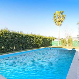 Beautiful Home In Los Palacios W/ Outdoor Swimming Pool, Outdoor Swimming Pool And 3 Bedrooms photos Exterior