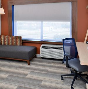 Holiday Inn Express & Suites - Brighton South - Us 23, An Ihg Hotel photos Room