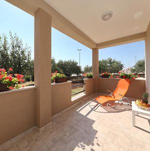 Sunny And Restful Apartment With Free Parking - Lily photos Exterior