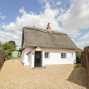 The Little Thatch Cottage photos Exterior