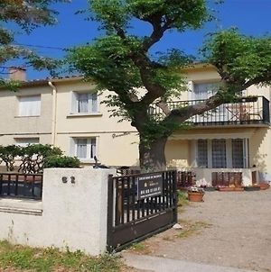 Appartement Argeles-Sur-Mer, 2 Pieces, 4 Personnes - Fr-1-388-93 photos Exterior