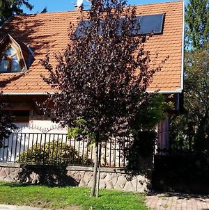 Holiday Home In Fonyod/Balaton 18705 photos Exterior