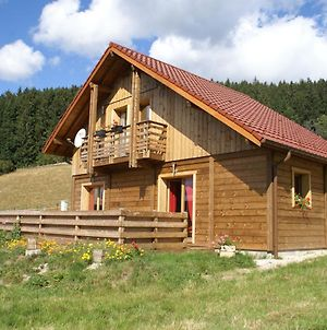 Sunlit Chalet Near Ski Area In Gerardmer photos Room