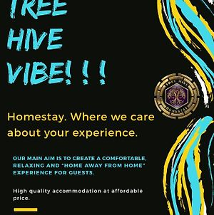 The Hive Homestay Auroville photos Exterior