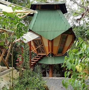 Ecolodge Kasaguadua photos Exterior
