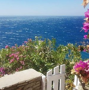 Studio In Ormos Kardianis With Wonderful Sea View Furnished Terrace And Wifi 60 M From The Beach photos Exterior