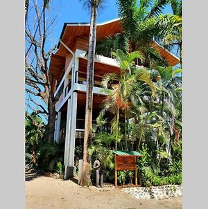 Nosara Tree House photos Exterior