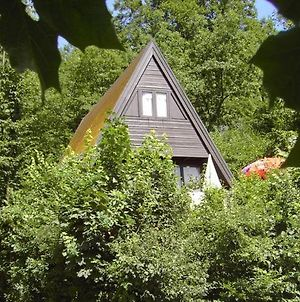 Cozy Detached Chalet With Terrace In The Durbuy Area photos Exterior