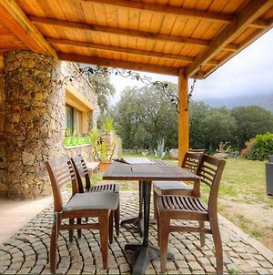 Studio In Moltifao With Wonderful Mountain View Furnished Garden And Wifi 20 Km From The Slopes photos Exterior