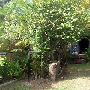 Bungalow With One Bedroom In Saintleu With Wonderful Sea View And Enclosed Garden 100 M From The Beach photos Exterior