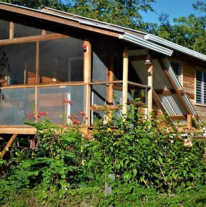 Fully Equipped 2 Bedroom Tree Top Cottage, With Large Balcony In Private Garden photos Exterior