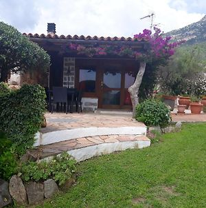Apartment With One Bedroom In Olbia With Wonderful Sea View Enclosed Garden And Wifi 6 Km From The Beach photos Exterior