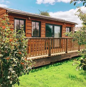 The Holford Arms Chalets And Glamping photos Exterior