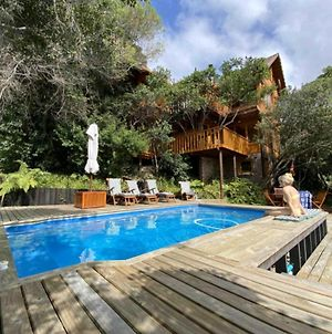 Ngong Serenic Tree House photos Exterior