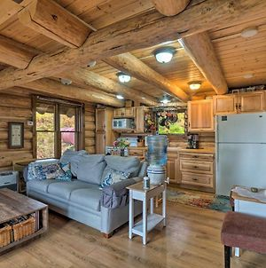 Heavenly Homer Log Cabin With Ocean & Mtn Views! photos Exterior