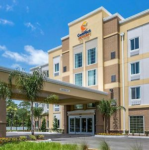 Comfort Suites Daytona Beach - Speedway photos Exterior